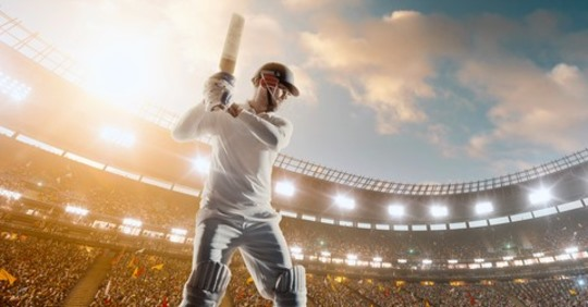Udemy Cricket Course